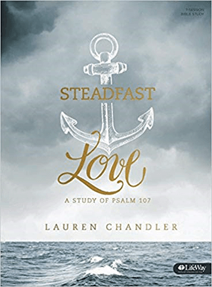 A Steadfast Love book cover